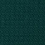 Lona De Vinilo De Grano Fiat (GF) Verde